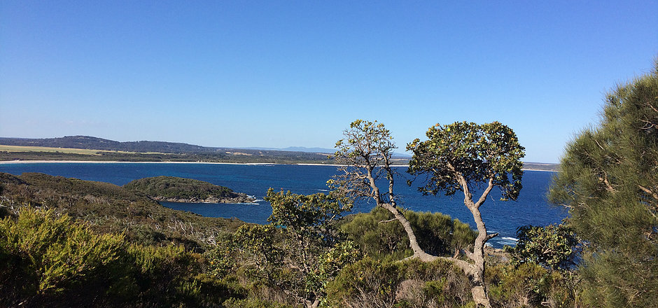 Walk various sections of Western Australia's stunning Bibbulmun Track with Simply Trekking.