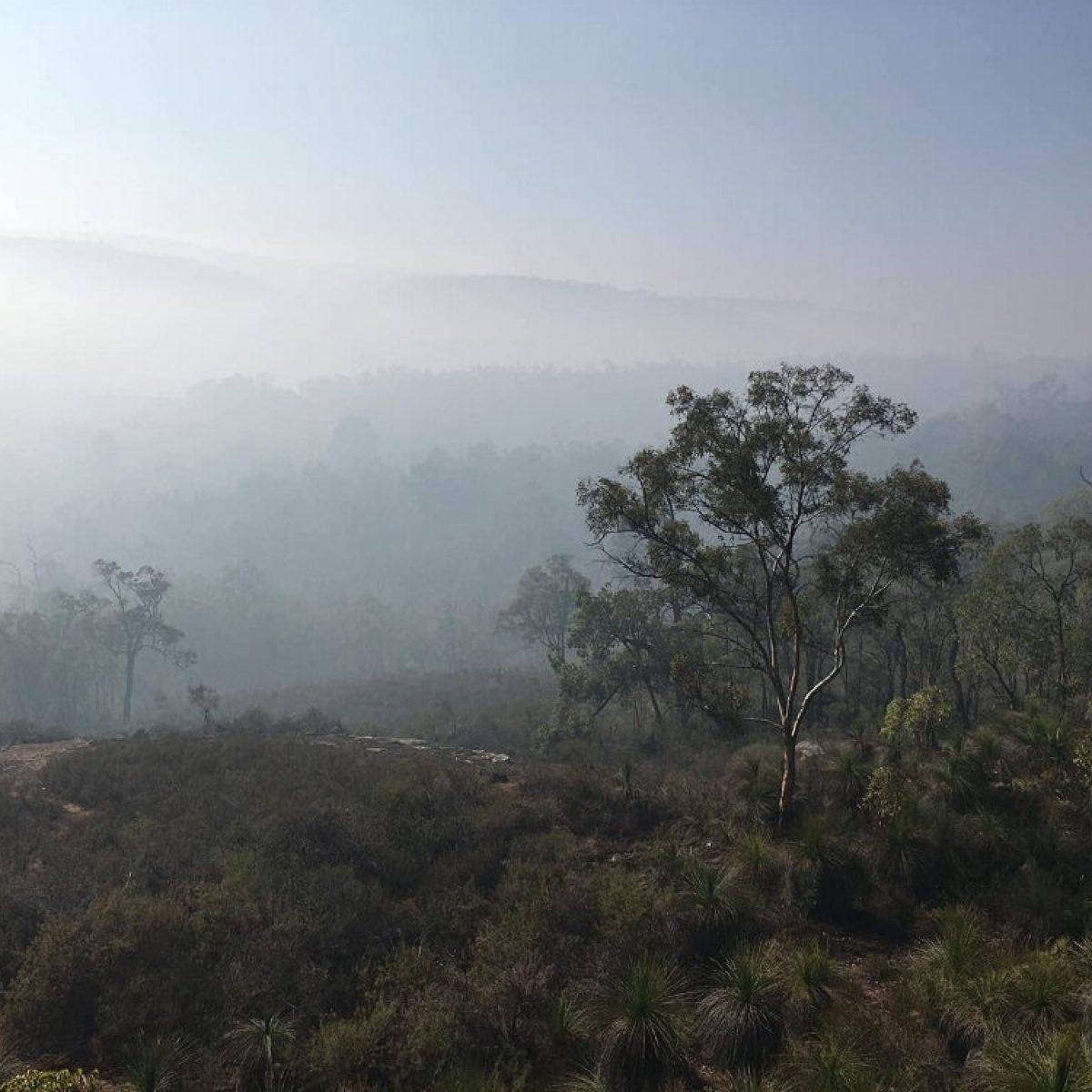 Mist over Darling Scarp Helena Valley Bibbulmun Track Western Australia