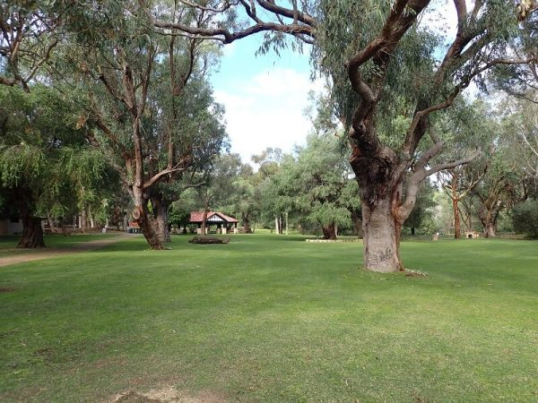 Yanchep National Park green picnic grounds