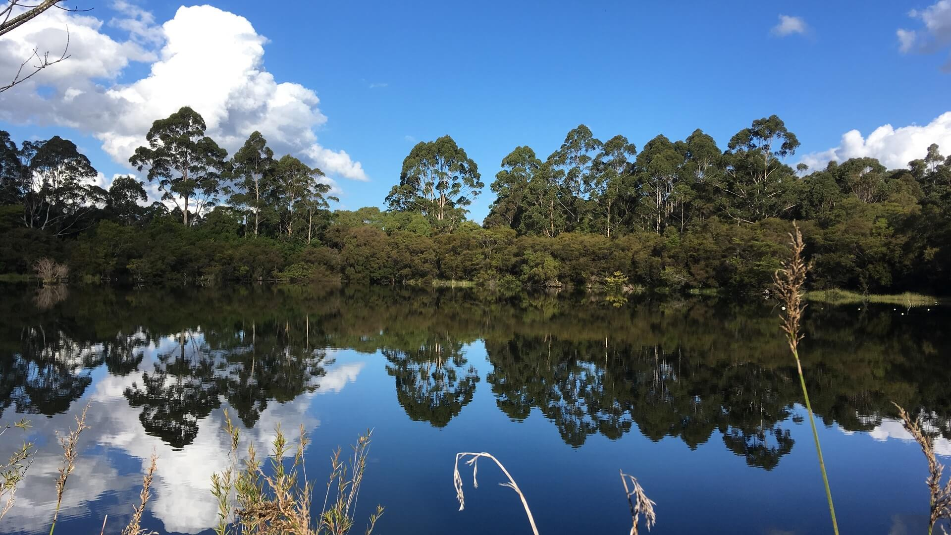 Lake in front of Schafer Hut Pemberton to Northcliffe section of the Bibbulmun Track