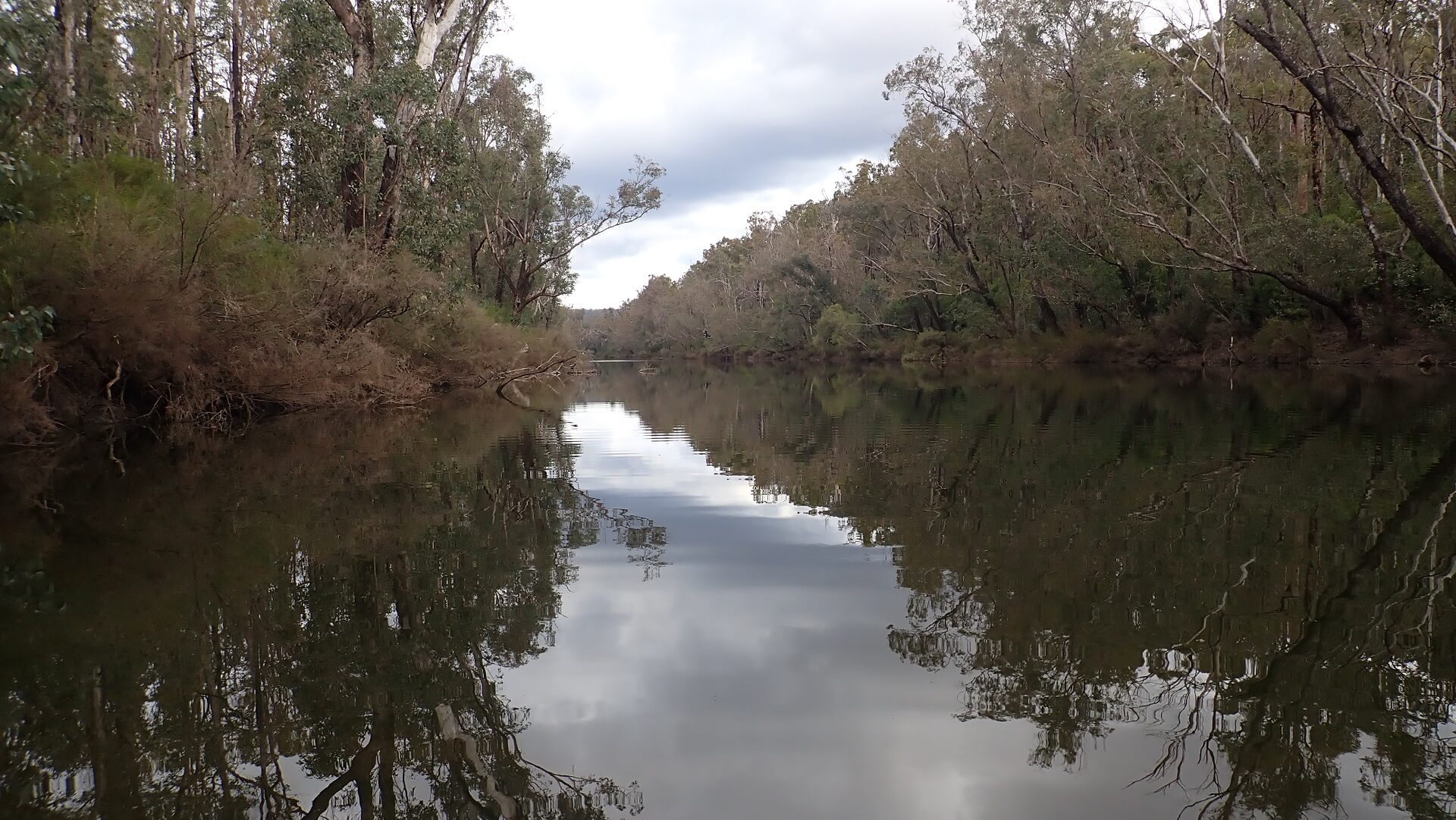 Murray River at the campsite on the Bibbulmun Track