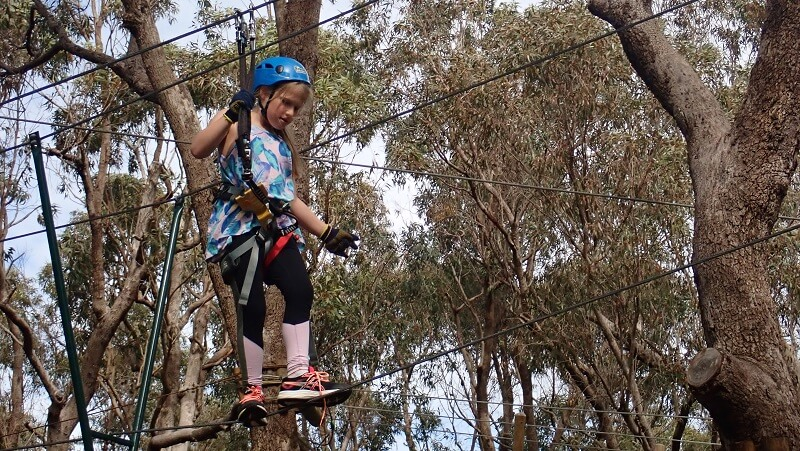 Treetop adventure for 9 to 12 year olds at Yanchep National Park