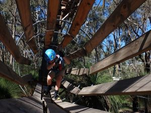 Treetop adventure for 4 year olds upwards