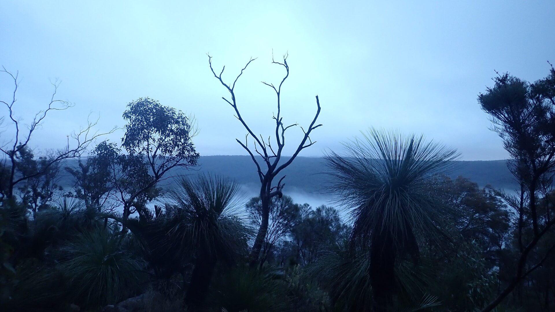 Sunrise on the Darling Scarp Bibbulmun Track