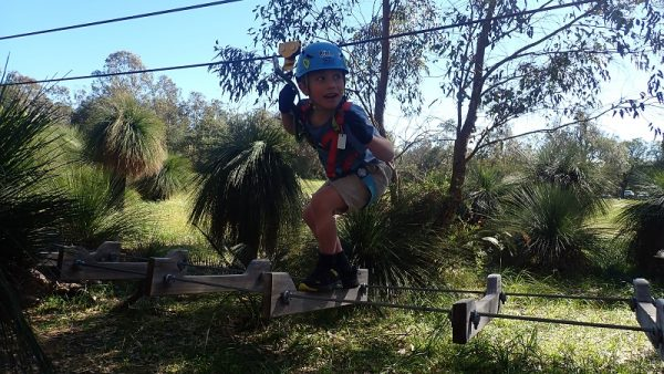 Treetop challenge for age 4 upwards