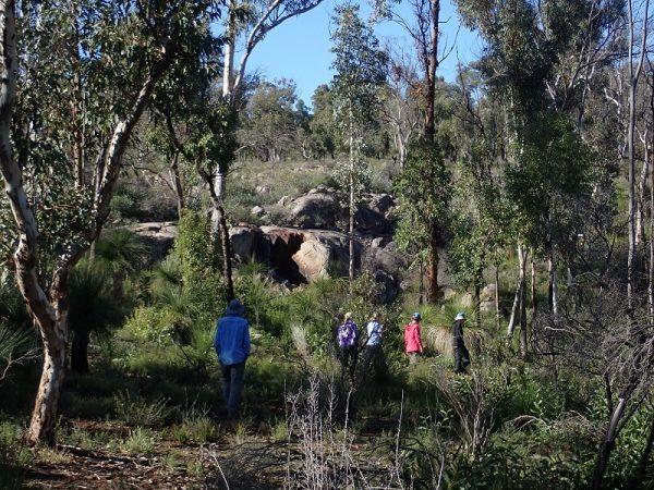 Trekking through forest on the Bibbulmun Track