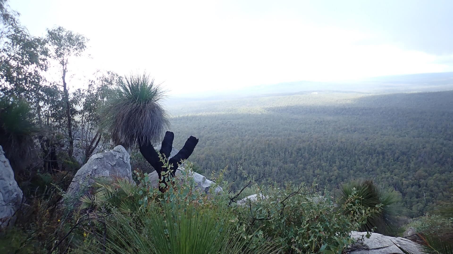 Valley views from Mt Cooke Bibbulmun Track